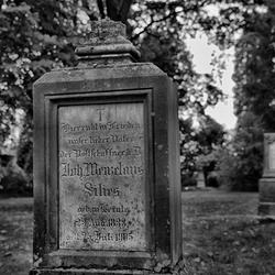 Oude begraafplaats Rheine 6