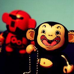 Monkey got chains