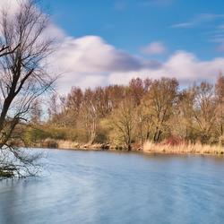 Woods of Haarlem