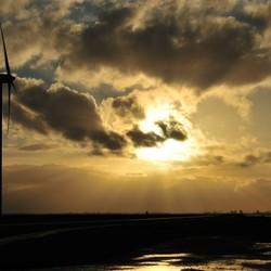 Oostvaardersdijk  vandaag 1