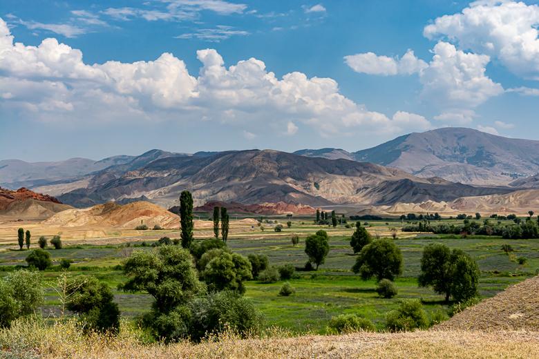 Kleurrijk landschap -