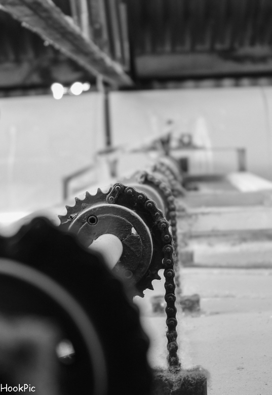 verlaten steenfabriek, close-up - IMG_3070-LR900.jpg