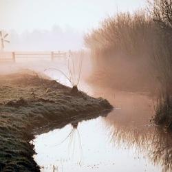 Heiige polder
