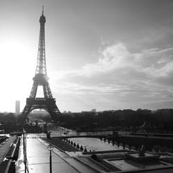 Eiffel met Tegenlicht