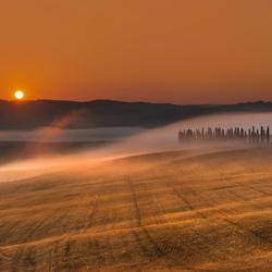 Mist in brand ...