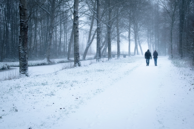 Koppel in een winters bos -