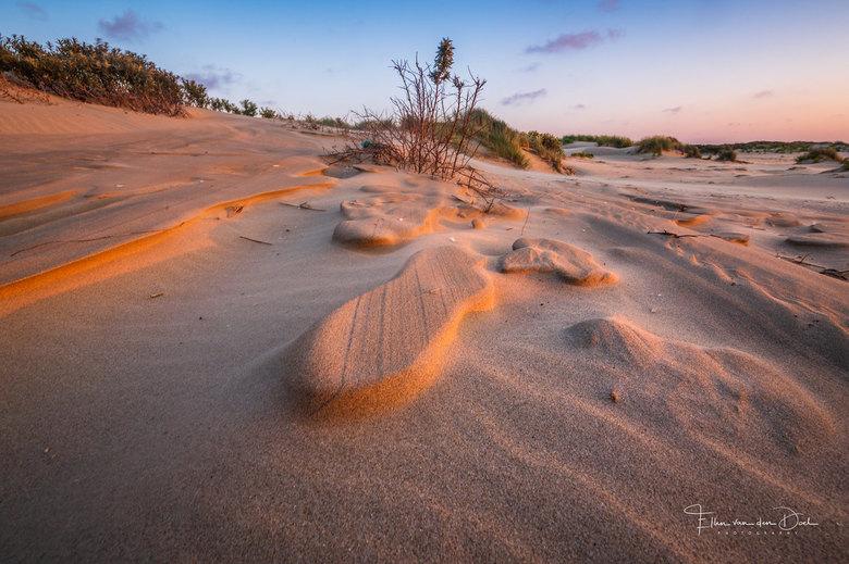 Golden Structures - Prachtige gouden structuren op het strand van de Kwade Hoek tijdens zonsondergang.