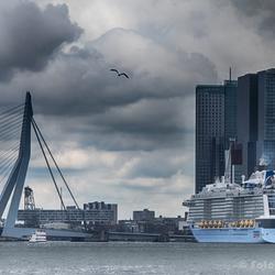 Ovation of the Seas, maidentrip to Rotterdam