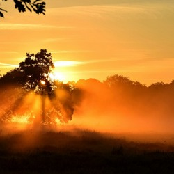 zonsopkomst bij Glimmen
