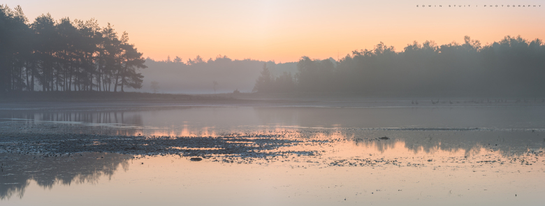 Ochtendmist Dwingelderveld - Net terug van een vakantie aan het Dwingelderveld. Deze panoramafoto is net voor zonsopkomst genomen op één van de weinig