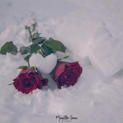 Fijne Valentijn!
