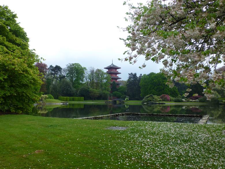 tuinen kasteel van Laken - Dit is in de tuin van Kasteel van Laken in België. Deze tuinen worden maar drie weken per jaar voor het volk opengesteld. J