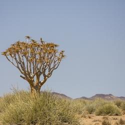 Namibië 10