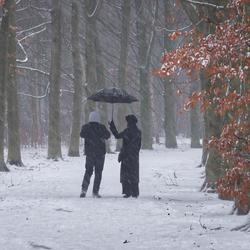 Winterse wandeling