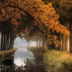 Autumn in Friesland