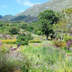 Botanische tuin Kaapstad