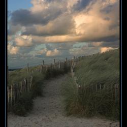 De Egmondse duinen