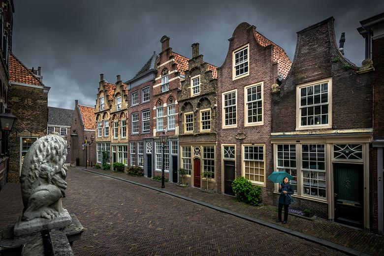 Oud Dordrecht - In de oude stad Dordrecht staan ze er nog. De oude huisjes zoals we ze alleen uit prentenboeken kennen. Zelfs met slecht weer prachtig