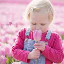 De geur van lente