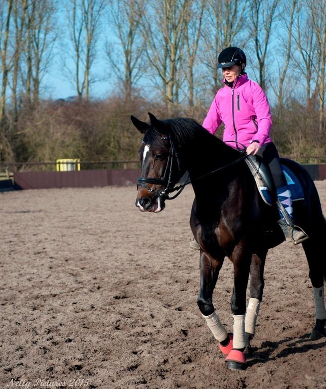 Woep in actie - Het paard wat ik laatst voor de camera had, blijkt Woep te heten. Een charmante vent van een jaar of zes.