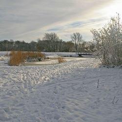 Winter in Rhoon