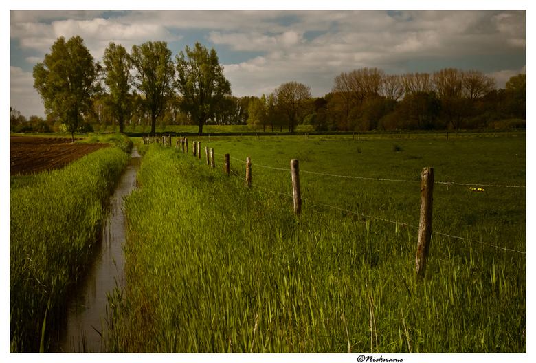 Outlook - Een uitzichtpunt op het platteland, waarbij ik heb geprobeerd de aandacht van de kijker zoveel mogelijk naar de 4 bomen te leiden.
