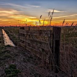 Een weiland, een hekje, een slootje  en de zonsopgang :-)