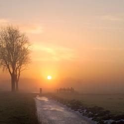 mistige wintermorgen