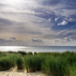 Strand van Burgh-Haamstede
