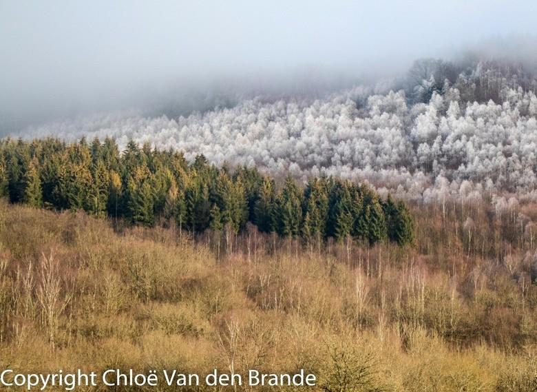 winter in de ardennen - winterlandschap in de ardennen