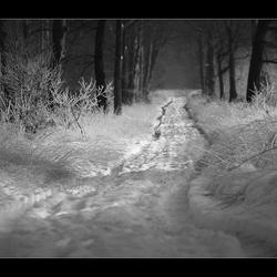 Spoor in de sneeuw