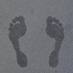 Feeth