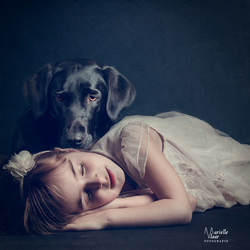 Love between child and dog