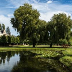 Cartils, een foto uit het park.