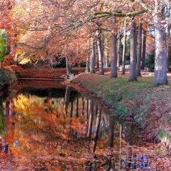 50 tinten herfst