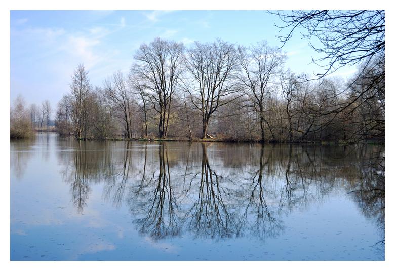 Door de bomen het bos niet meer zien - Visvijver Doorth in Dieteren