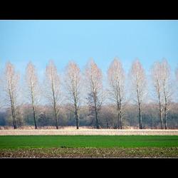 Landschapslijnen