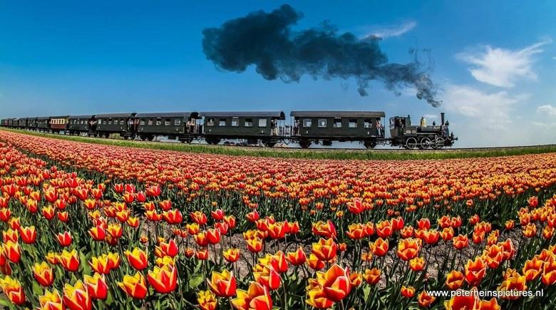 Opstomen - Stoomtrein Hoorn-Medemblik bij Twisk