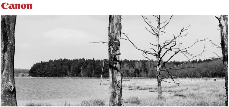Canon fotowedstrijd: Zwart-wit
