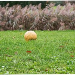 Golfterrein in Hasselt 11