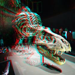T-Rex Naturalis Leiden 3D