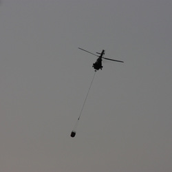 Cougar Helicopter