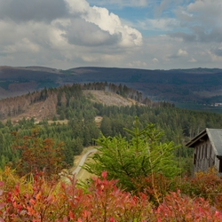Autumn Harz