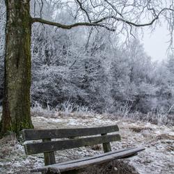Bankje in de winter