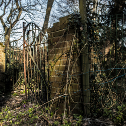 spooky garden