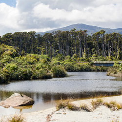 Cycling New Zealand, Ship Creek