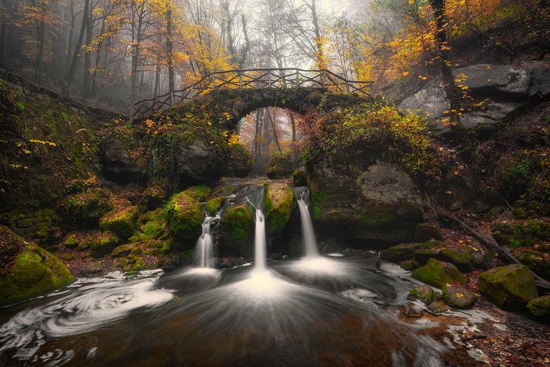 Mullertal schoonheid - Een geweldig stukje natuur in Mullerthal, Luxemburg. Geweldig om dit op de foto te zetten in een prachtige omgeving waar je ook