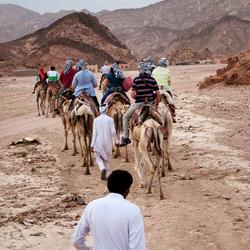 Sinai woestijn