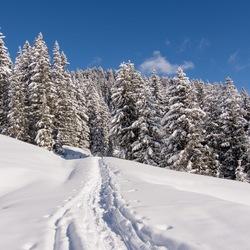 Verse sneeuw