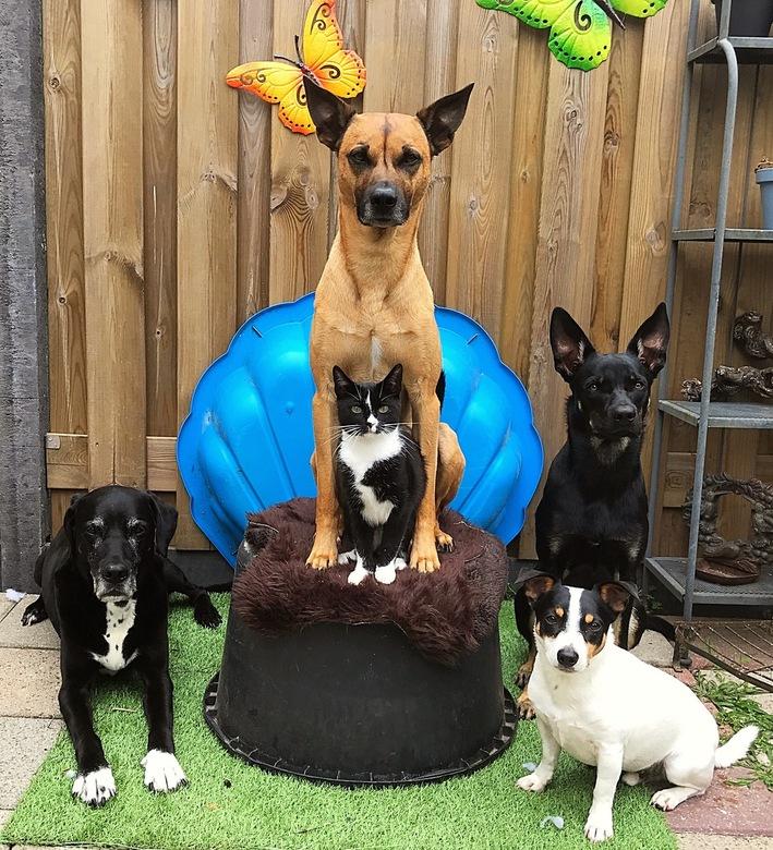 Happy family -